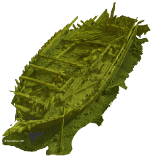 Index picture of Alko wreck